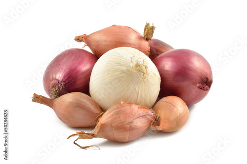 Onions, shallots, garlic and white onion
