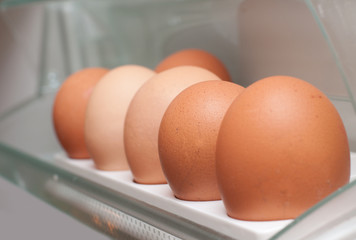 Chicken eggs in the fridge
