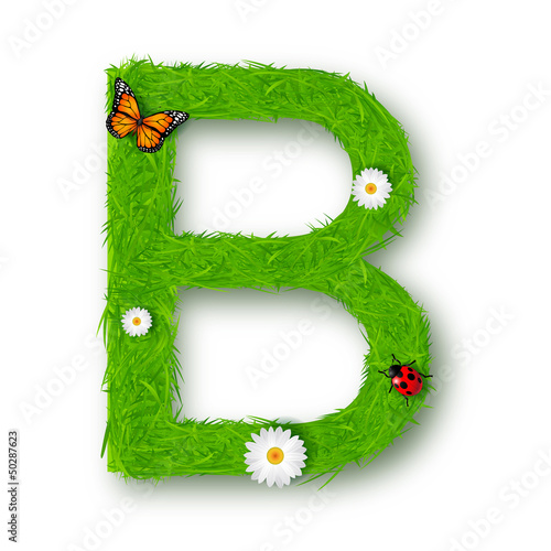 Grass letter B on white background