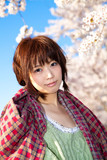 A beautiful woman in cherry blossom / Blue Sky