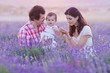 happy family having fun in lavender field