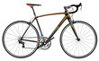 Sportiv bike