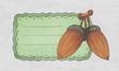 vintage label with a acorn fruit