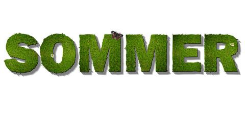 Sommer Schrift aus Gras, weißer Hintergrund