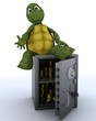 tortoise sat on a safe