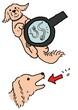 犬の寄生虫の駆除