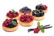 Tartelettes de fruits