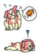 犬のノミの駆除
