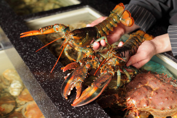 living marine cancer in hand restaurateur