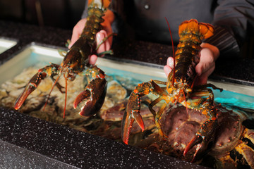 living marine cancer in hand restaurateur