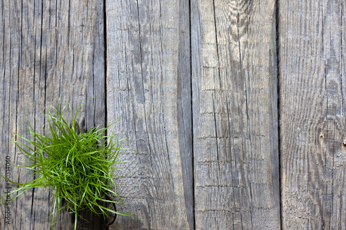Green grass and planks abstract background