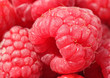 close up of raspberry