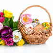 Easter egg decoration in basket and tulip flowers isolated on wh