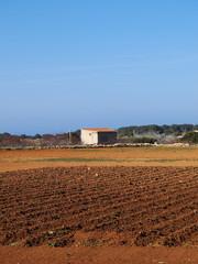Field on Formentera, Balearic Islands, Spain