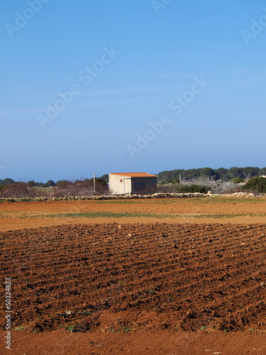 Field on Formentera, Balearic Islands, Spain