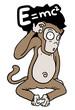 Physical monkey