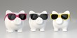 Piggy bank - colorful sunglasses