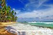 Fototapeta Tropików - Wyspa - Wybrzeże