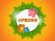 Beautiful Spring Flowers Orange Background