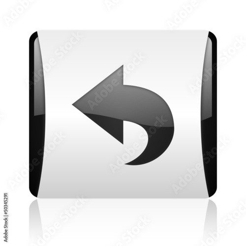 back black and white square web glossy icon
