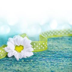 Herzförmige Blüte auf Holz