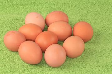 Chicken eggs.