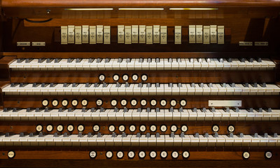 Pipe Organ