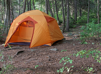 Orange Tent in a Forest
