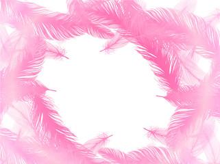 羽根 羽 背景 ピンク