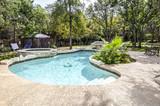 Fototapety Backyard swimming pool