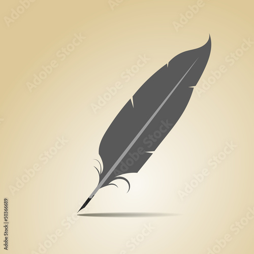 Feather on a yellow background