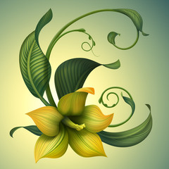 abstract beautiful yellow summer flower isolated