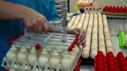 Industrial packing eggs