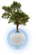 concept planète Terre écologie