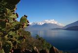 Lago di Como, paesaggio