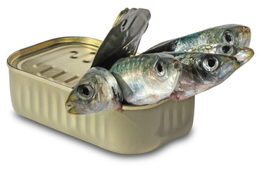 Fish in cans