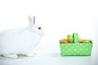 White bunny facing basket of easter eggs