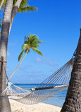 Hammock between palm trees and the sea