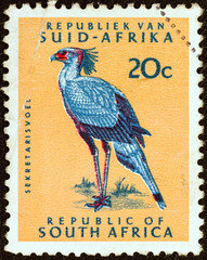 Secretary bird (South Africa 1961)