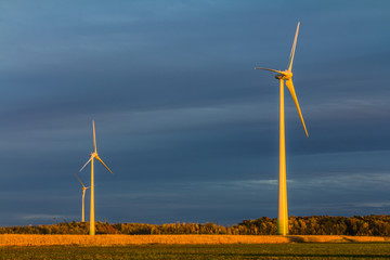 Wind turbine in a field in the evening, producing wind, Canada