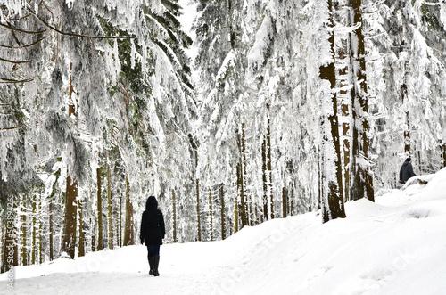 Fototapeten,schnee,schuh,hiking,schneeschuhe