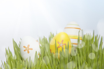 Easter eggs in the fresh green grass.