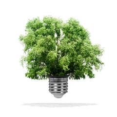 Arbre poussant dans une ampoule - concept écologiquea