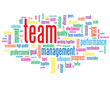"""TEAM"" Tag Cloud (management performance goals targets teamwork)"