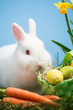 White bunny sitting beside easter eggs in green basket and carro