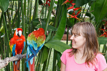 tourist looking at colourful macaws