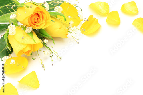 yellow rose and haze grass