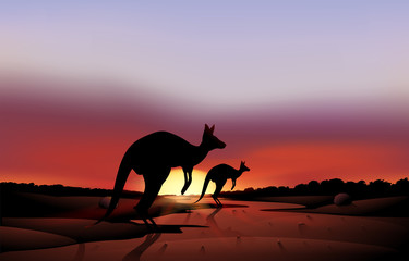 A big and a small kangaroo in the desert