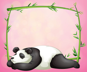 A green frame with a panda sleeping