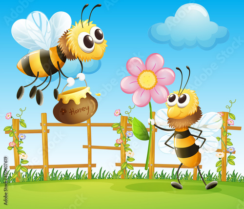 Two big bees in the garden